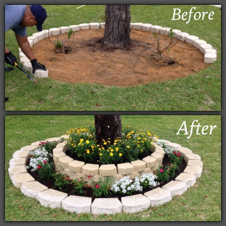 DIY landscaping under a tree with rocks and flowers.